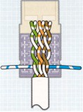 Route wires for termination, according to the chosen color code. Terminate and trim one pair at a time, starting from the rear of the connector, in the order shown. Terminating each pair after placement will prevent crushing the inside pairs with the punch down tool.